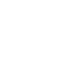 Made in Germany Global Access